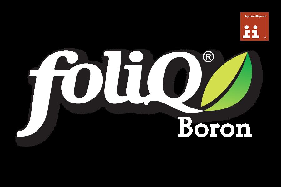 FOLIQ BORON