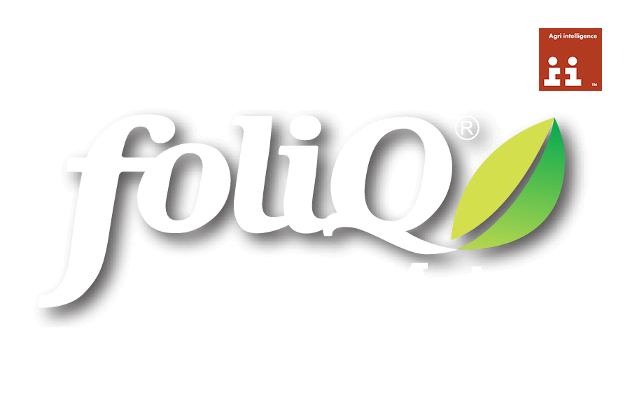 FOLIQ MAIZE