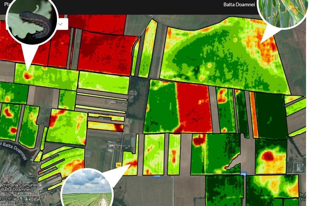 AGRII ofera fermierilor, GRATUIT, Serviciul Digital RHIZA!