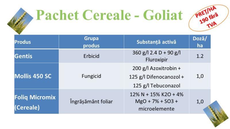 Hercule si Goliat, doua pachete de primavara pentru cereale paioase, de la Agrii!