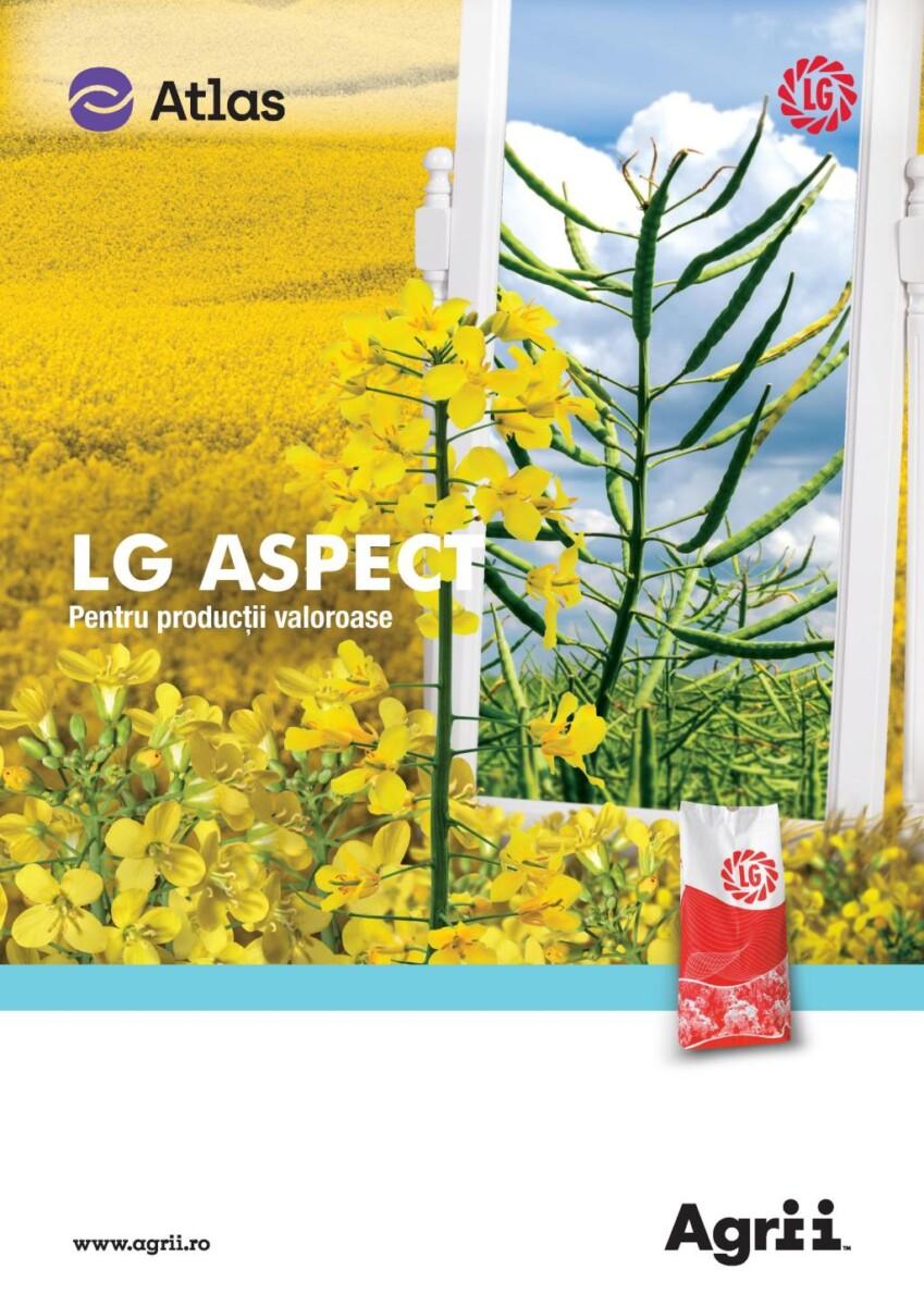 LG ASPECT