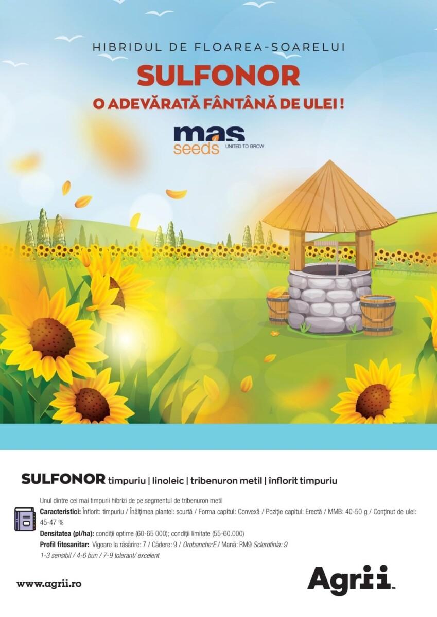 Hibridul de floarea-soarelui SULFONOR, o adevarata fantana de ulei !