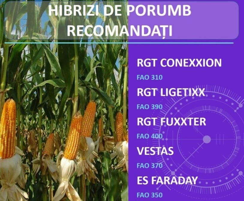 Alegeti hibrizii de porumb din reteaua Agrii Romania!