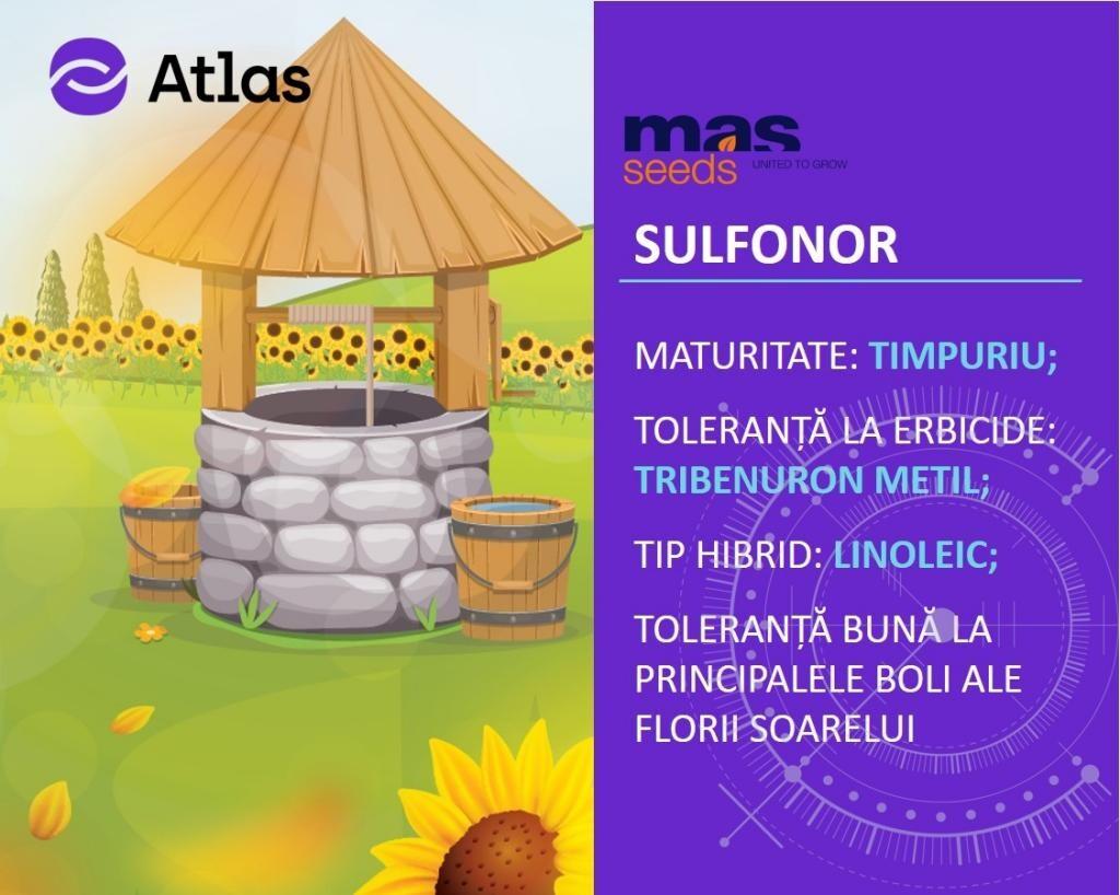 Recomandarea Agrii pentru campania de primavara: Hibridul de floarea-soarelui SULFONOR!