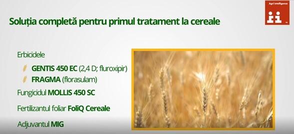 Recomandarile Agrii pentru primul tratament la cereale paioase