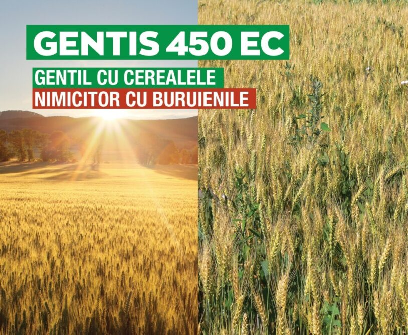 GENTIS 450 EC, solutia optima si eficienta pentru combaterea buruienilor din cereale paioase