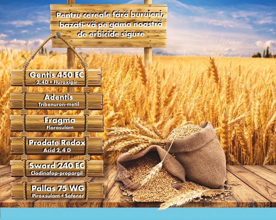 Pentru cereale fara buruieni, bazati-va pe gama noastra de erbicide!